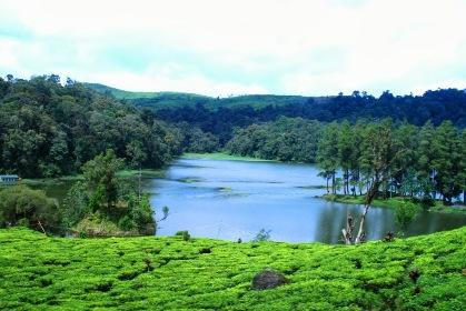 Situ Patenggang, Destinasi Wisata untuk Relaksasi