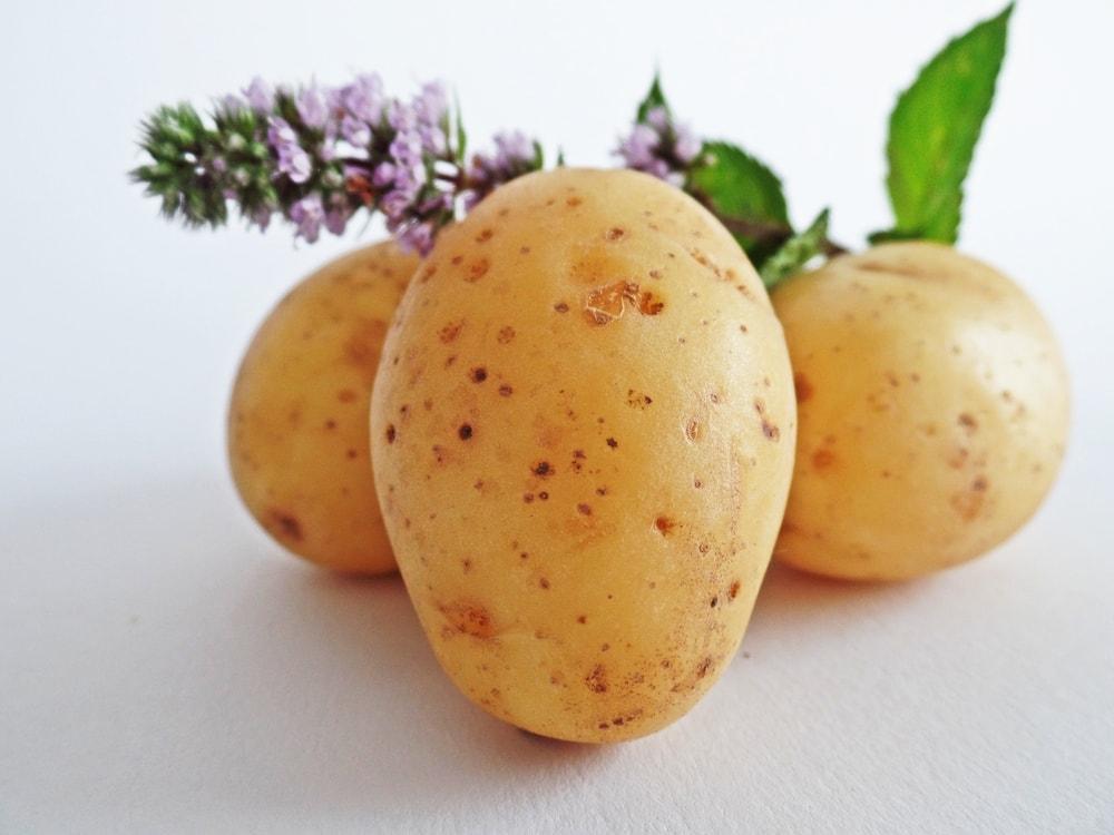 menghilangkan mata panda dengan kentang
