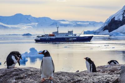 7 Fakta Menarik Antartika