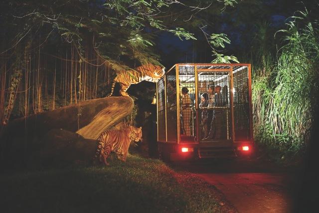 Serunya Atraksi di Bali Safari & Marine Park