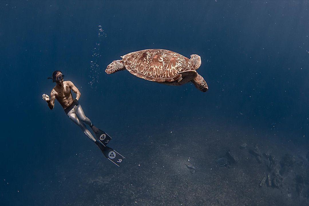 Kenali Freediving, Olahraga Yang Digeluti Musisi Dikta