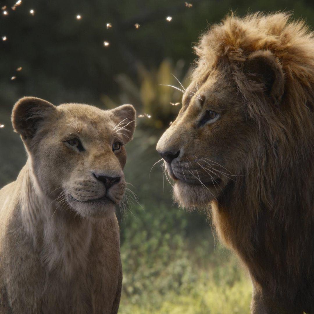 Kabar Terbaru Prekuel Film The Lion King