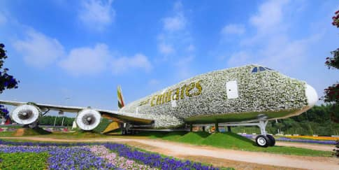 Pesawat Emirates Dari Bunga di Dubai Miracle Garden