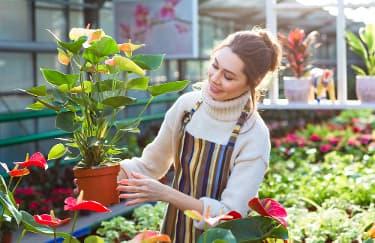 Rasakan 6 Manfaat Berkebun Bagi Kesehatan