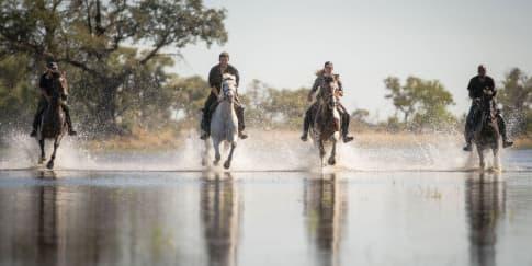 Pengalaman Safari Tidak Terlupakan Bersama Belmond