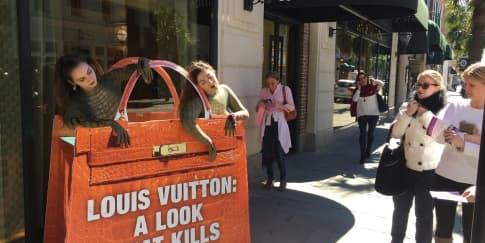 Aksi Protes Buaya di Depan Toko Louis Vuitton