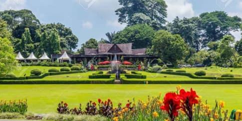 7 Tempat Wisata Bogor yang Bisa Jadi Pilihan Saat Libur