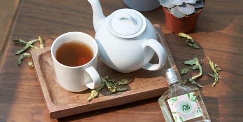 Koleksi Wewangian Green Tea Terbaru yang Lembut Menyegarkan