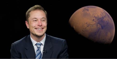 Elon Musk Pump Dump Dogecoin?