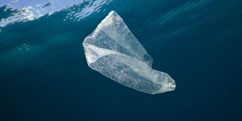 Kerjasama Breitling Dan Ocean Conservancy