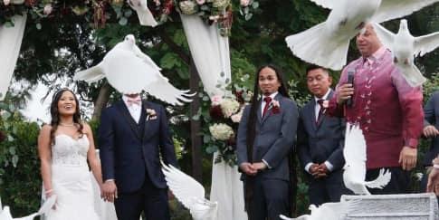 Pelepasan Burung Merpati Di Pernikahan Oleh Pengantin