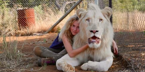 Review Film: 'Mia and The White Lion'
