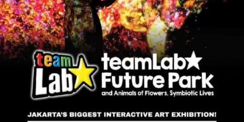 TeamLab Future Park