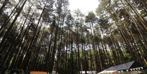 Tempat Wisata di Bogor yang Paling Hits