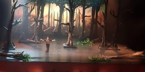 Ulasan Seni: 'Bawi Lamus: Bumi Pertiwi, Tanah Dayak'