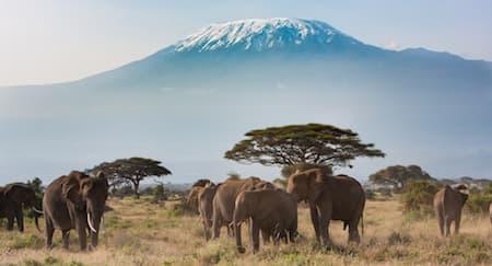 Tips Mengunjungi Tanzania