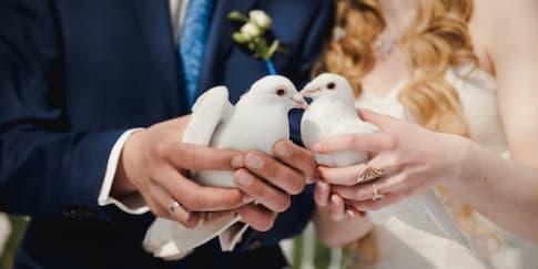 Melepaskan Sepasang Burung Merpati Saat Pernikahan