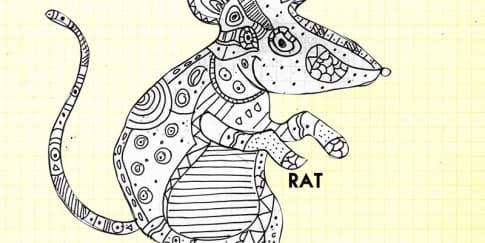 Peruntungan Shio Tikus di Tahun Ayam