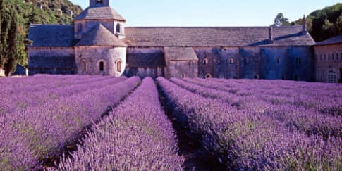 Nikmati Aneka Wine di Provence, Prancis