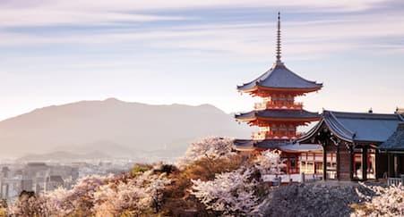 Tempat Cantik Pilihan Fotografer Prewedding di Kyoto