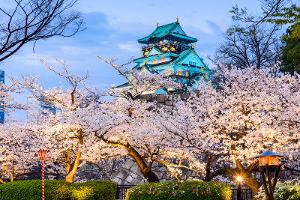 5 Lokasi di Asia untuk Pre Wedding Bernuansa Bunga