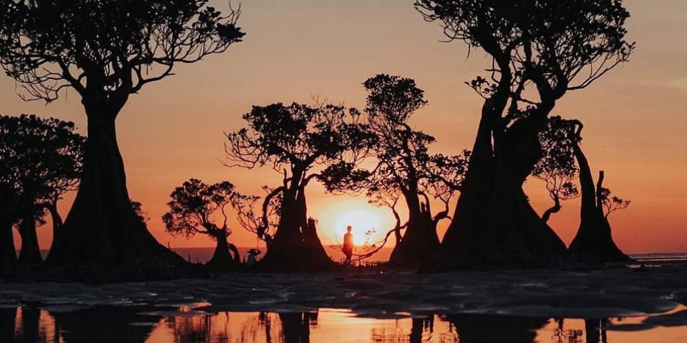 3 Travel Vlog Ke Pulau Sumba Yang Wajib Ditonton