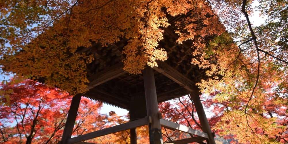 7 Tempat Wisata Di Jepang Yang Wajib Dikunjungi