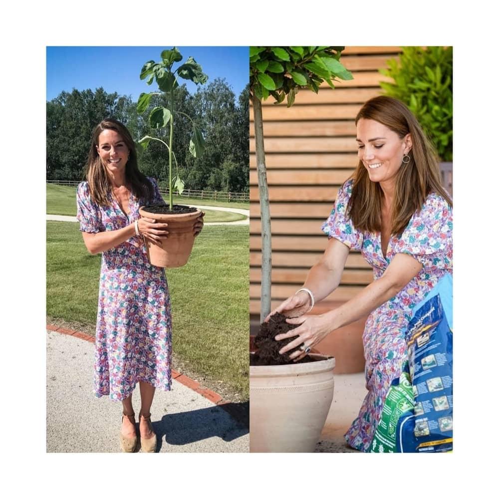 Kate Middleton Tanam Bunga Matahari Untuk Fraser Delf