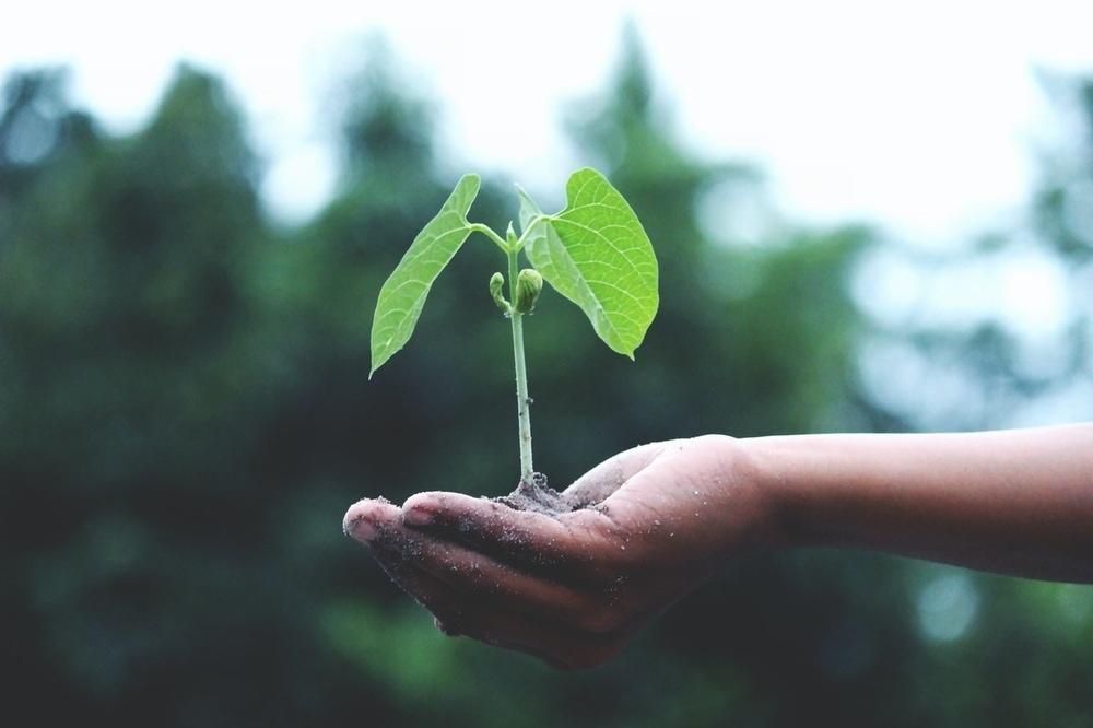 10 Cara Mudah Yang Bisa Dilakukan Sebagai Aksi Peduli Bumi