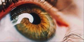 Kurang Menjaga Matamu? Memengaruhi Fungsi Otakmu!