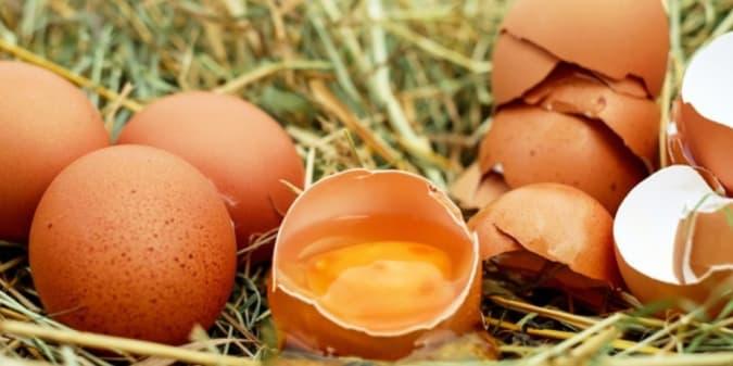 Mengulik Khasiat Kulit Telur Ayam untuk Perawatan Kulit